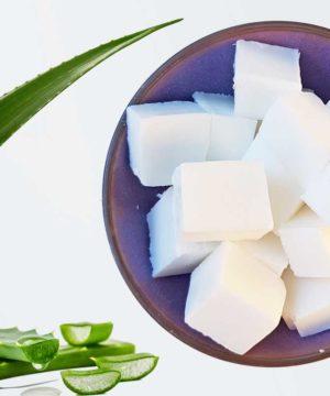 Molding soap - White - Solid Shampoo base
