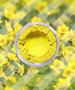 Glimmerpulver - Butterblume Gelb - 250 gr
