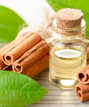 Kaneelblad etherische olie - 10 ml