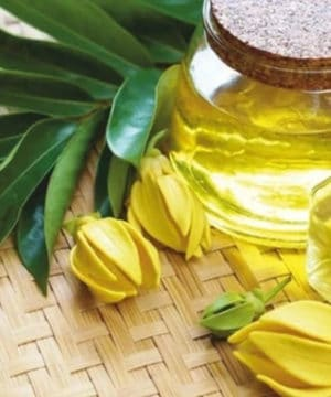 Ylang Ylang etherische olie - 10 ml