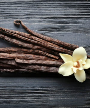Geurolie - Vanille - 10 ml