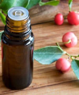 Aceite esencial de hoja perenne (Gaultheria)