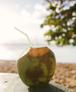 Geurolie - Kokos Paradijs