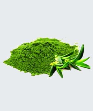 Aloe-Vera-Konzentrat-Pulver